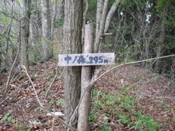 中の森山頂