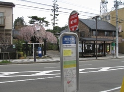 輪王寺前バス停